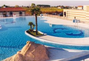 Con il progetto ripartire con il cuore la piscina comunale di trecate si dota di - Trecate piscina ...